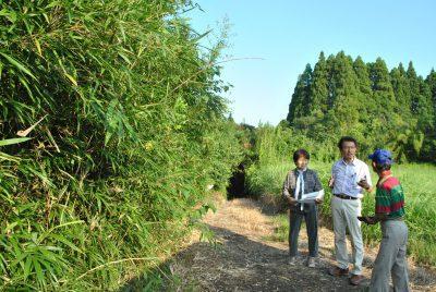 杉を切られた森林(左手)について聞き取りをする田村氏(中央)=2日、宮崎市